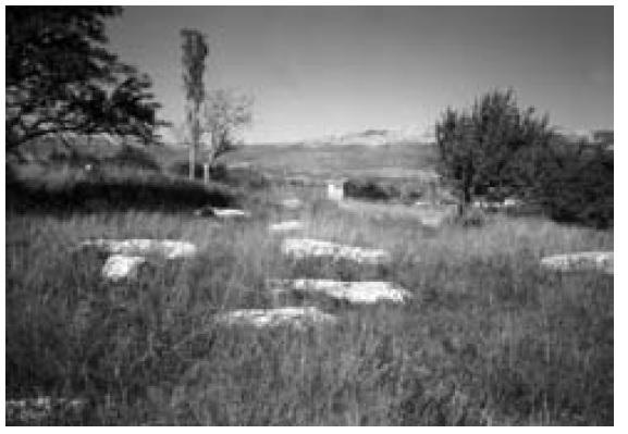 Nekropola Grebčine ispod Džakulinih kuća s desne strane ceste Sinj-Trilj, listopad 1994.