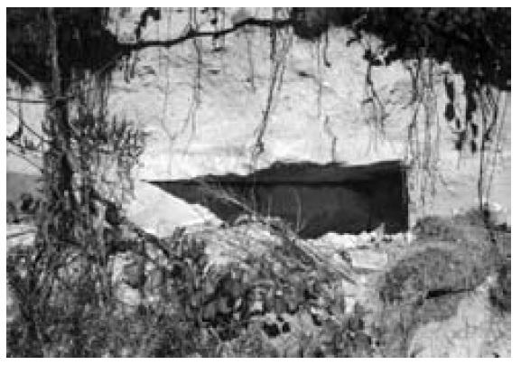 Nekropola Grebčine. Grob s lijeve strane ceste Sinj-Trilj, listopad 1994.