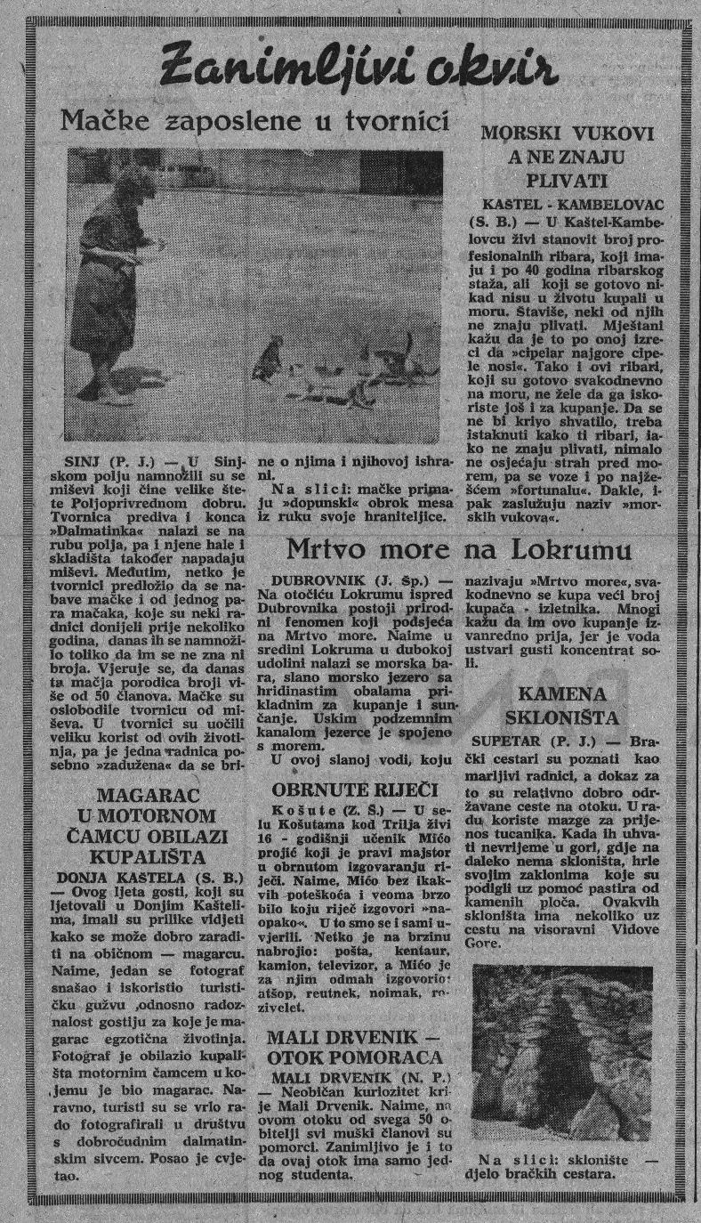 Košute u arhivu Slobodne Dalmacije 18.9.1965_2